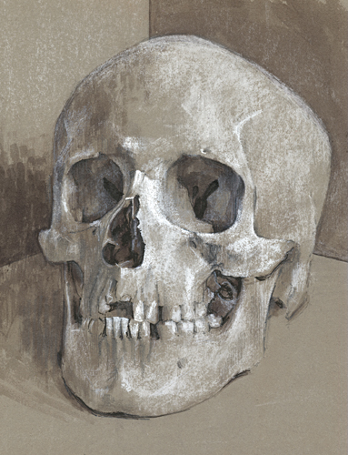 Portrait of a has-been, a drawing of a skull by Trevor Heath when an art student aged 18